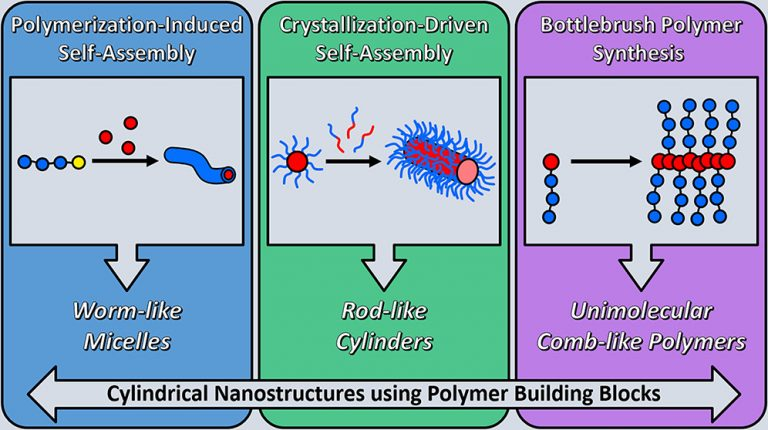 Getting into Shape: Reflections on a New Generation of Cylindrical Nanostructures' Self-Assembly Using Polymer Building Blocks, Jeffrey C. Foster, Spyridon Varlas, Benoit Couturaud, Zachary Coe, and Rachel K. O'Reilly, J. Am. Chem. Soc., Article ASAP, DOI: 10.1021/jacs.8b08648